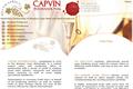 capvin Portfolio